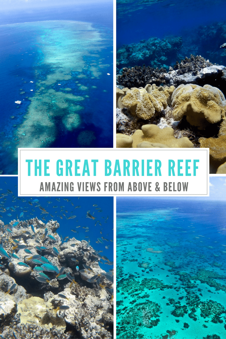 The Great Barrier Reef Views From Above And Below One